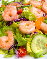 Shrimp_8141_16x20 port_ming